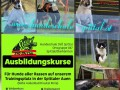 Hundeschule  - © www.hundeschule-spittal.at